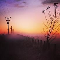 Rachel Donaldson photography